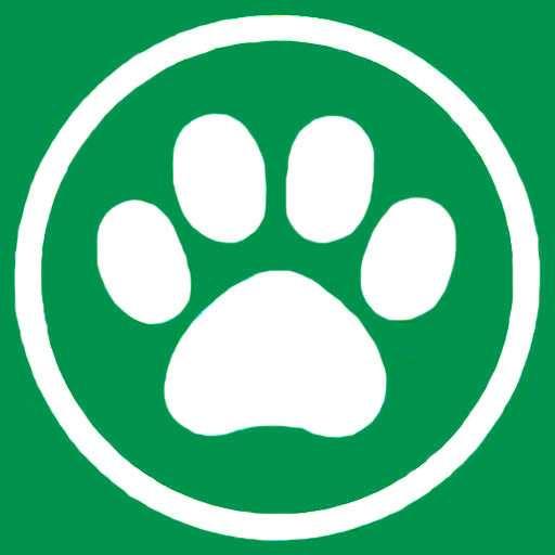 Коты, кошки и котята экзотических пород